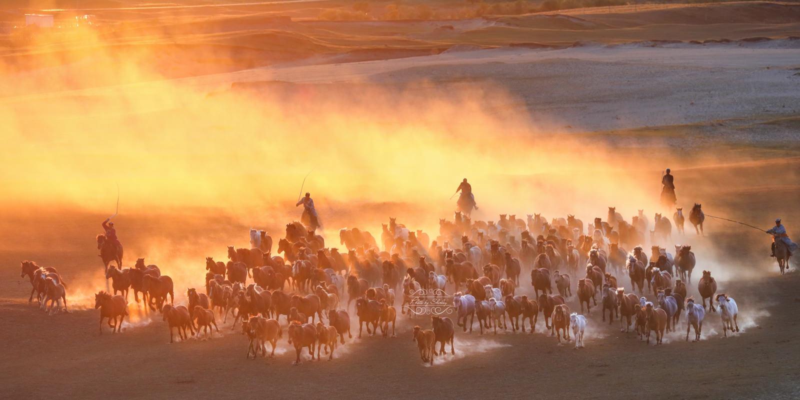 內蒙古萬馬奔騰