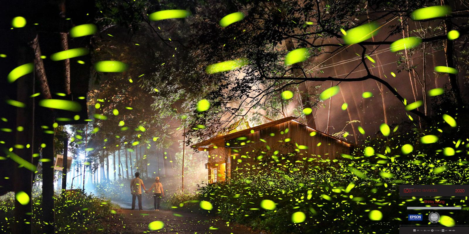 Flying-fireflies ~ 銀牌